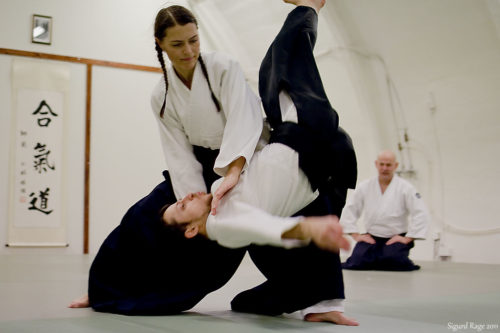 Difference Between Aikido and Karate