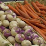Difference Between Vegan and Vegetarian Diets