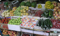 fruit_vegetable