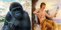 human-and-monkey-1