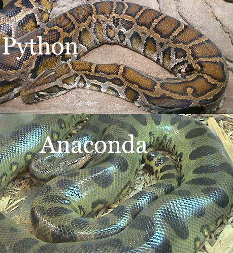 python-and-anaconda_s