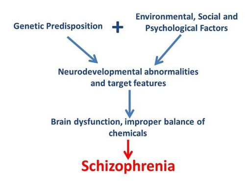 Difference Between Anxiety and Schrizophrenia-1