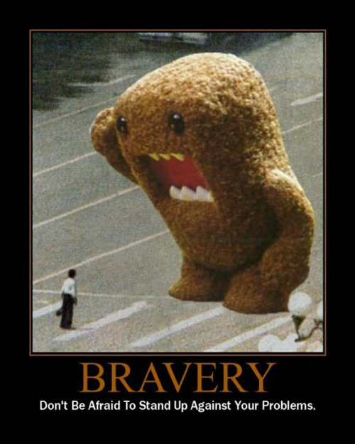 Difference Between Courage and Bravery-1