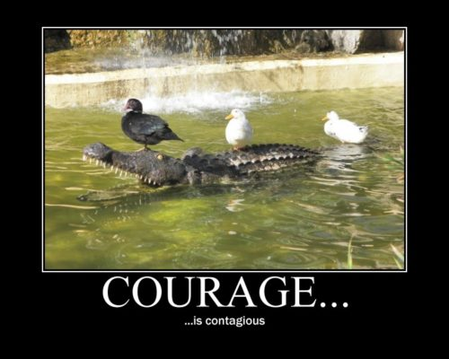 Difference Between Courage and Bravery