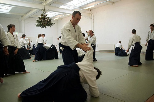 Difference Between Jujitsu and Aikido-1