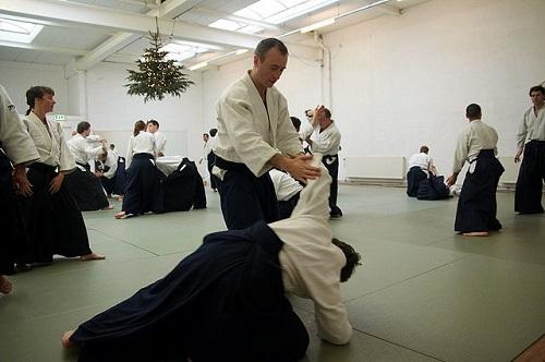 Difference Between Jujitsu and Aikido-1