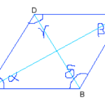 Difference Between Rhombus and Parallelogram