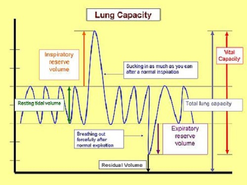 Difference Between Forced Vital Capacity and Vital Capacity