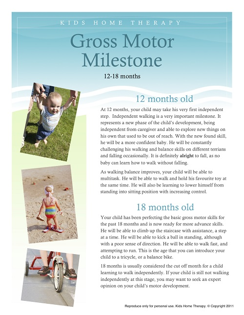 Difference Between Gross and Fine Motor Skills