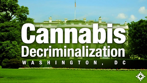Difference Between Legalization and Decriminalization-1
