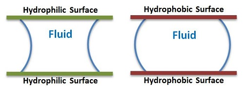 Difference Between Hydrophilic and Hydrophobic