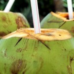 Difference Between Coconut Water and Coconut Milk