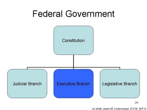 Difference Between Federal and National Government-1