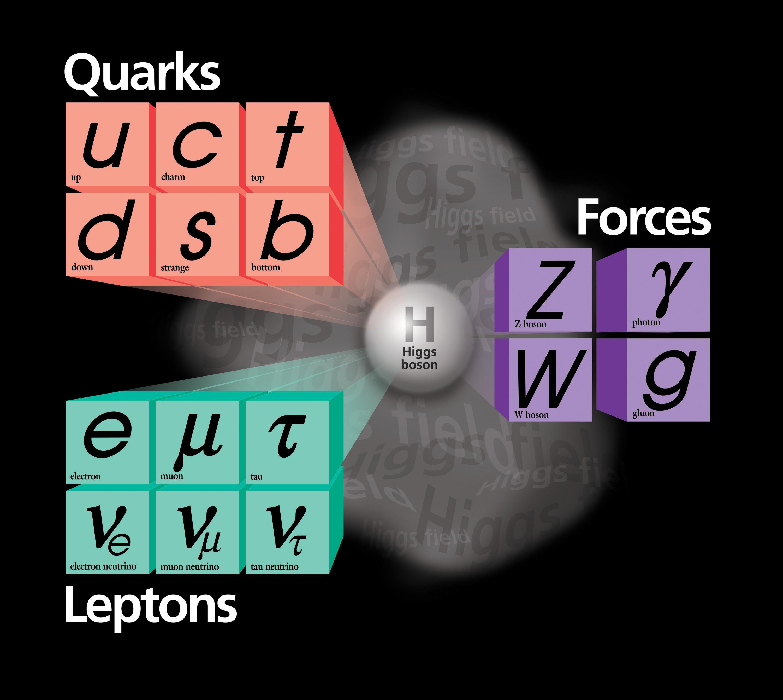 Standard_Model_From_Fermi_Lab