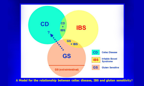 IBS and celiac disease