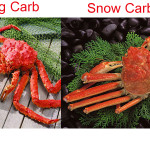 Difference between King Crab and Snow Crab