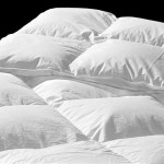 Difference Between Quilt and Comforter