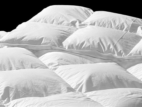 Difference Between Quilt and Comforter | Difference Between : difference between duvet and quilt - Adamdwight.com