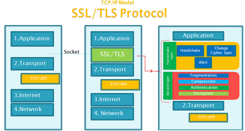 Difference Between TLS and SSL