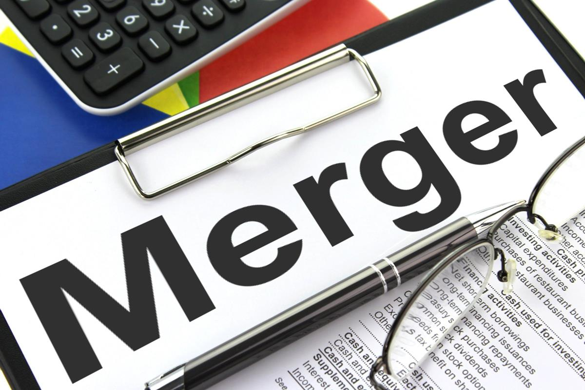 Difference Between Amalgamation & Merger
