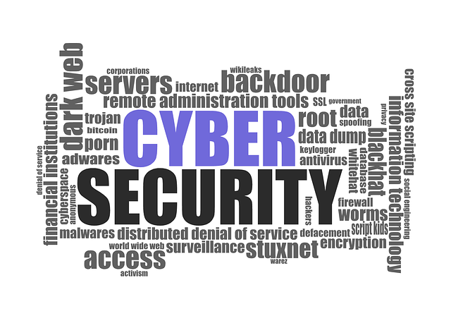 Difference between Cyber Security and Information Security