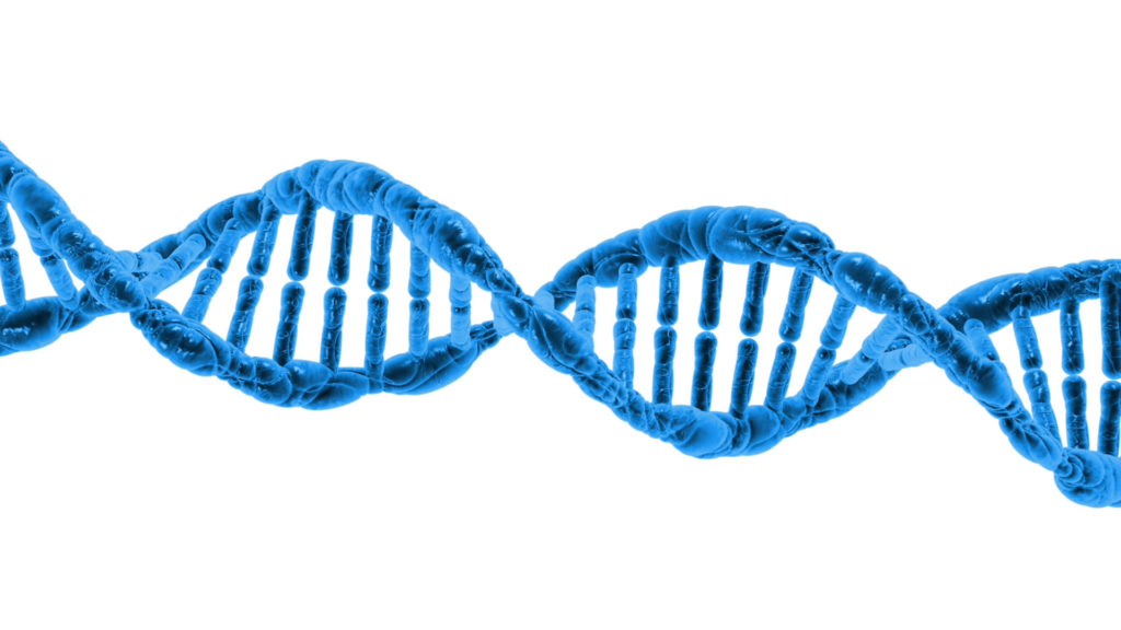 Difference Between DNA and Genetics