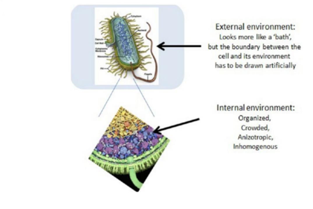Difference Between Internal and External Environment2