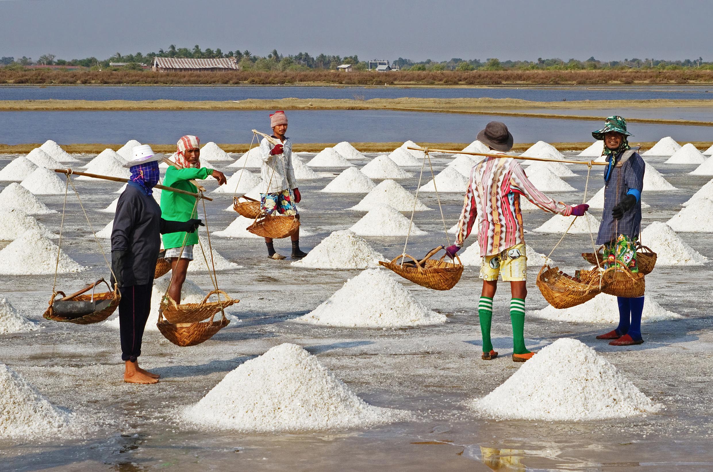 Difference Between Sea Salt and Rock Salt