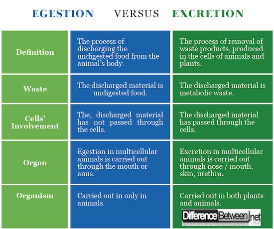 Egestion VERSUS Excretion