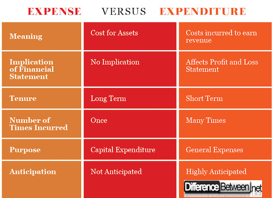 Capital Expenditure Essays and Research Papers