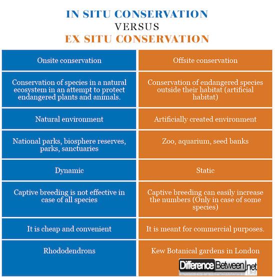 in situ conservation VERSUS ex situ conservation