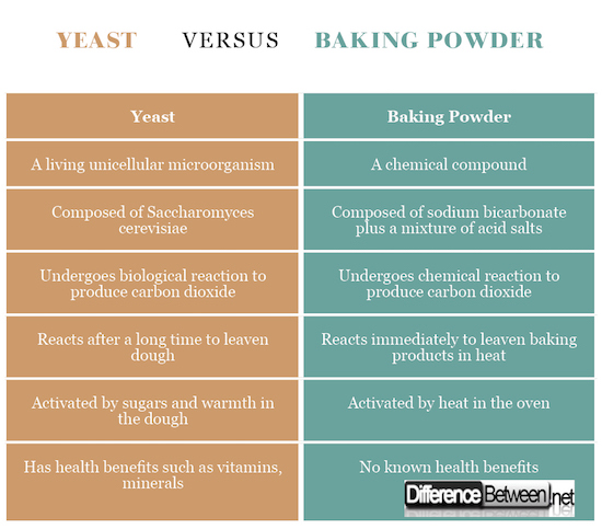 yeast VERSUS baking powder