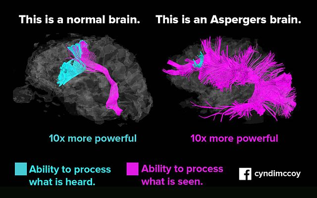 Difference Between Asperger's and High Functioning Autism