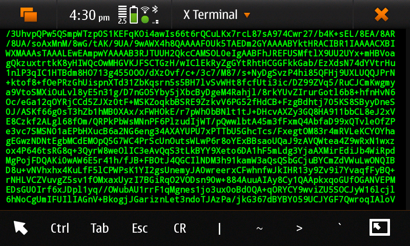 Difference Between Xterm and Terminal