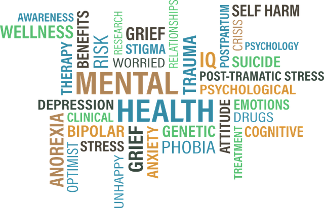 Difference between Mental Health and Emotional Health