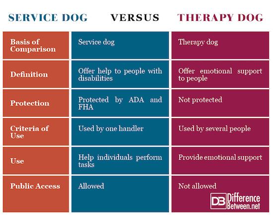 Service Dog VERSUS Therapy Dog