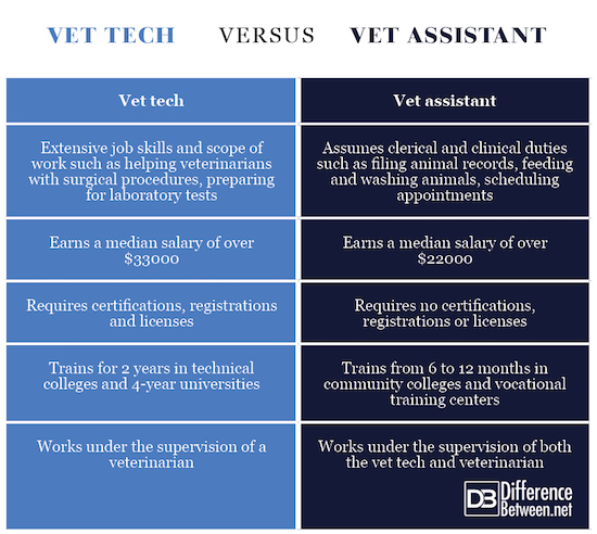 difference between vet tech and vet assistant | difference between ...