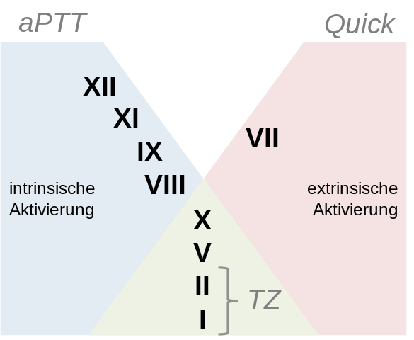 Difference Between PTT and APTT