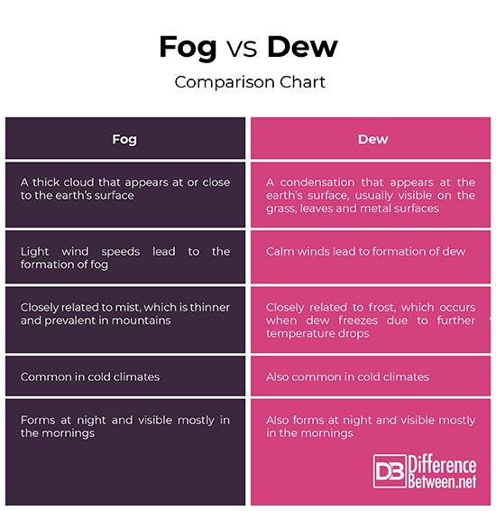 Fog vs Dew
