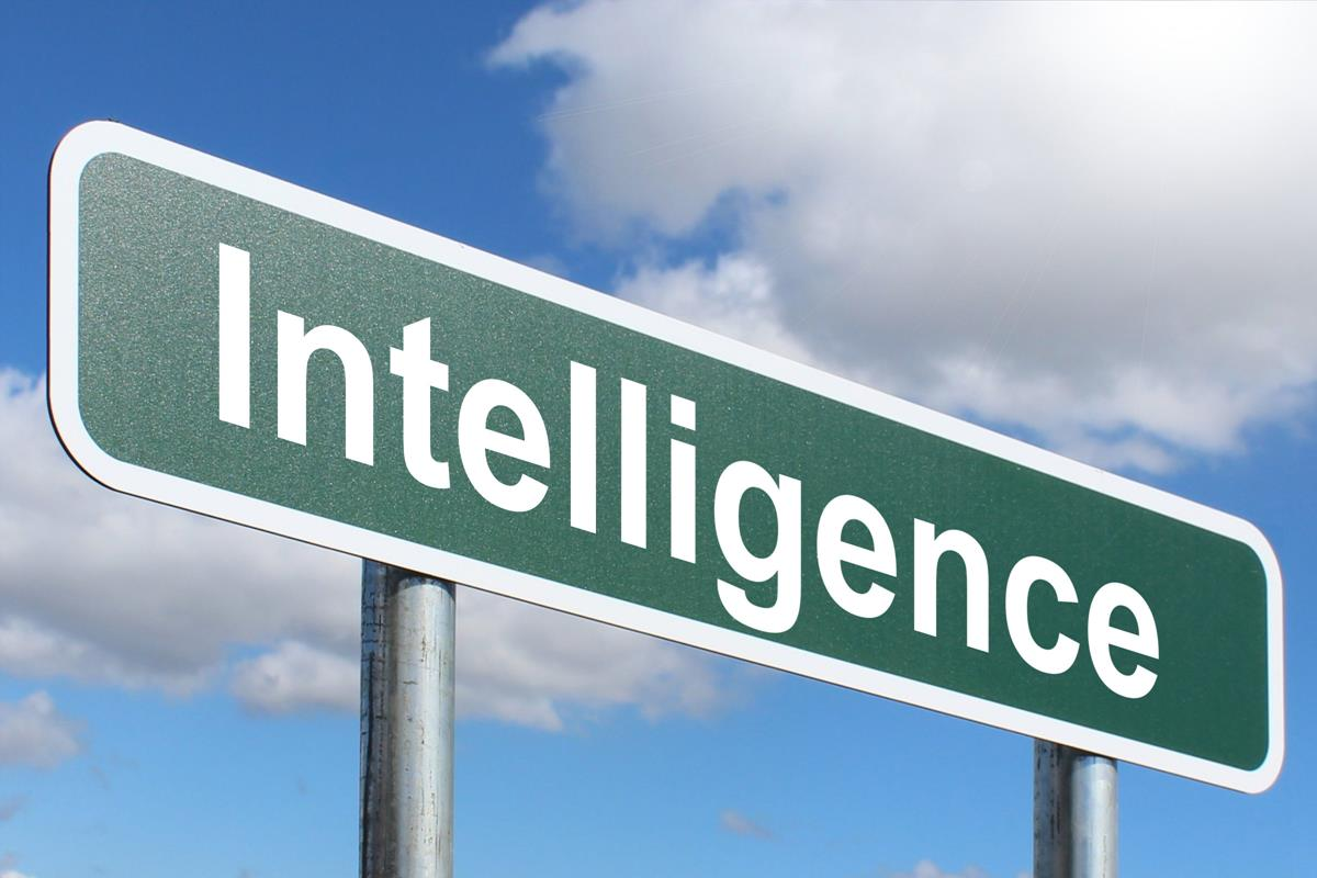 Difference Between Intelligence and Knowledge