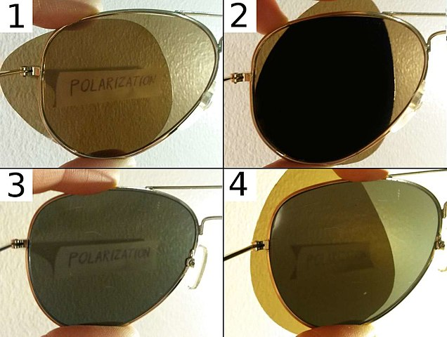 6742837fb4f Difference Between Polarized and Non-Polarized Lens