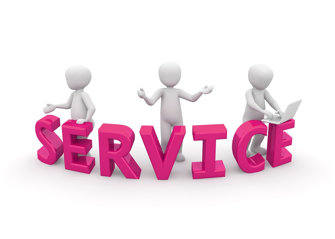 Difference Between Sales and Service