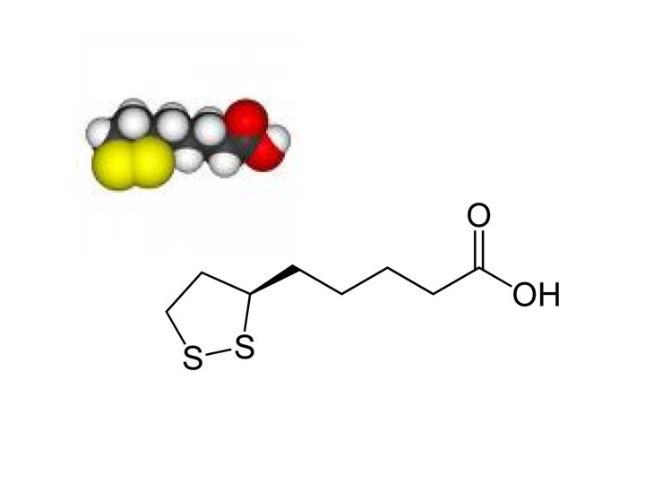 Difference Between Alpha Lipoic Acid and R-Lipoic Acid