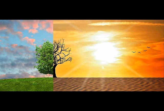 Difference Between Global Warming and Global Dimming