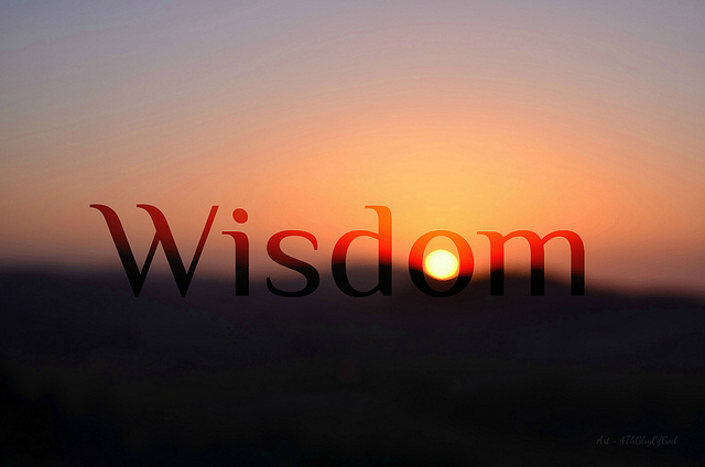 Differences Between Intelligence and Wisdom