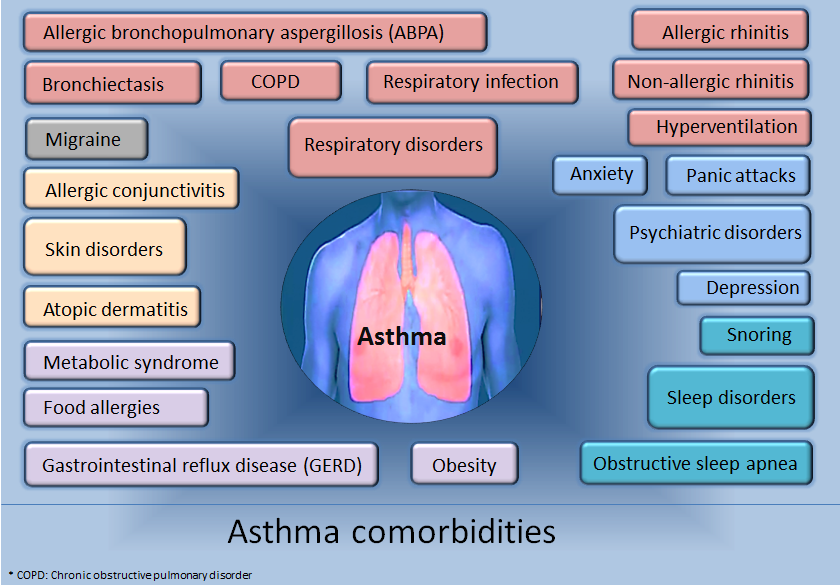 Difference Between COPD and Asthma Treatment