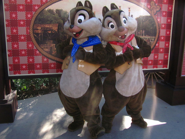 Difference Between Chip and Dale