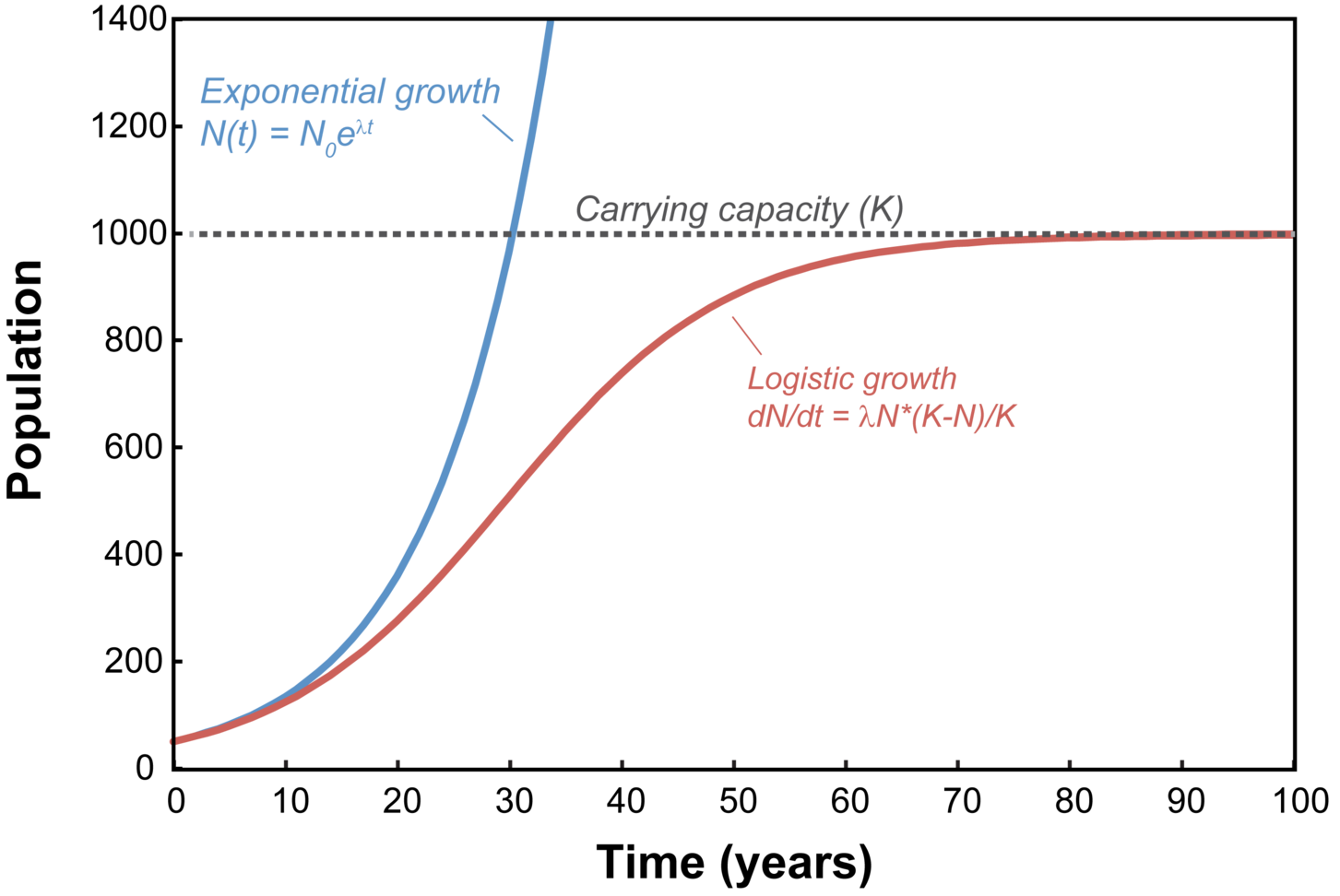 Difference Between Exponential Growth and Exponential Decay