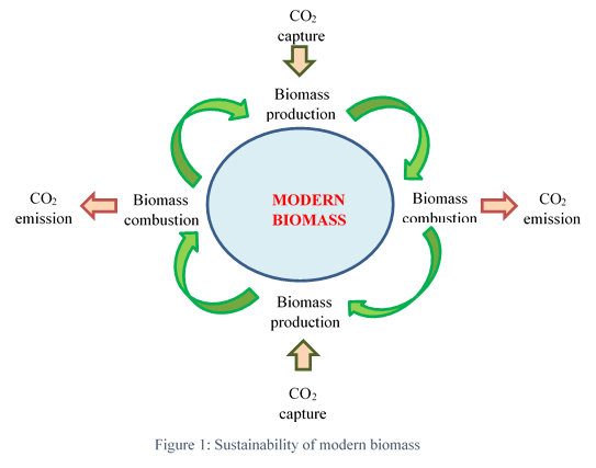 Difference between Biofuel and Biomass