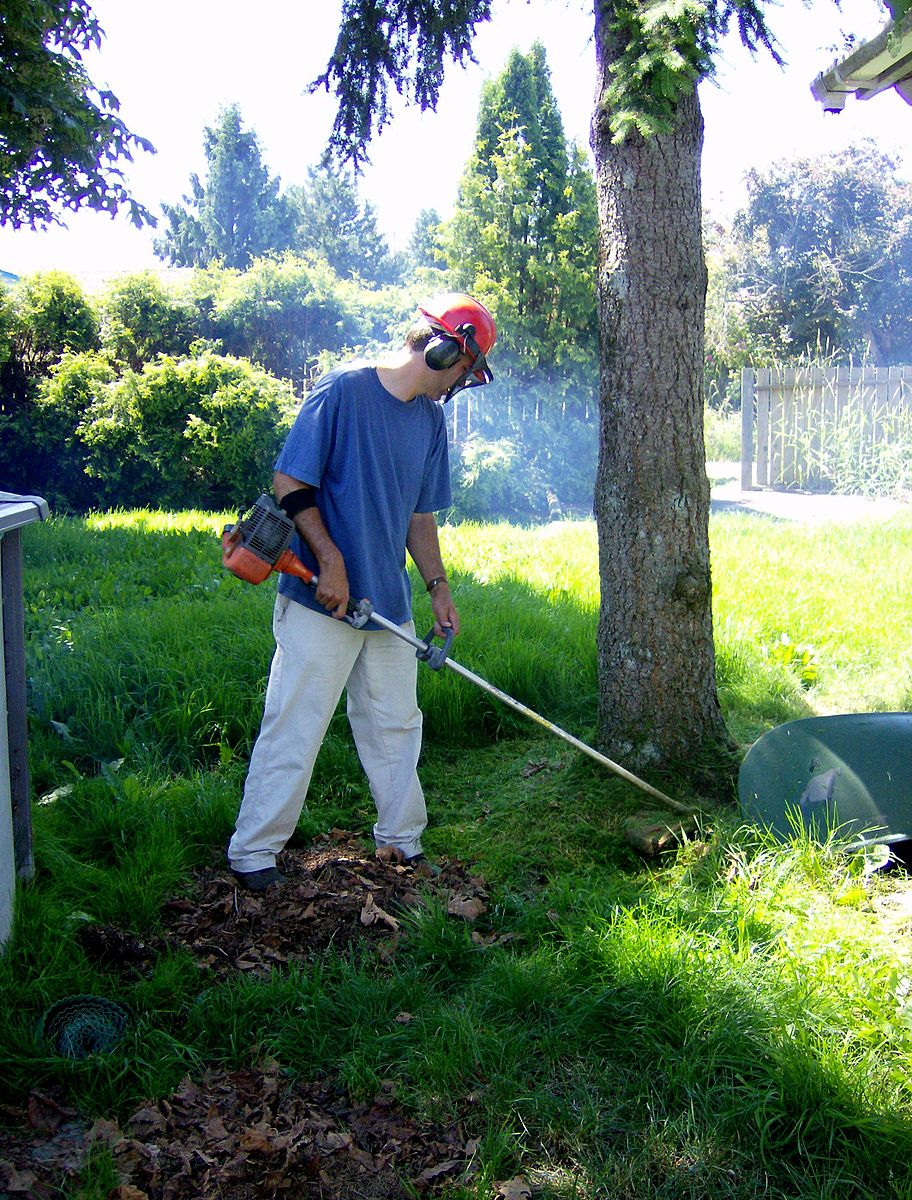 Differences Between Weed Eaters and Bladed Trimmers